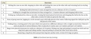 Functional exercise training